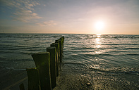 Netherlands, Westenschouwen, beach at sunset - MYF000988