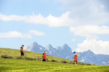 Austria, Flachau, three children at hay harvest - HHF005290