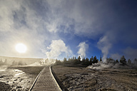 USA, Wyoming, Yellowstone National Park, Lower Geyser basin, steam of the geysers in the morning - FOF007997
