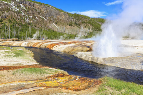 USA, Yellowstone National Park, Black Sand Basin, Eruption of Cliff Geyser at Iron Spring Creek - FOF007982