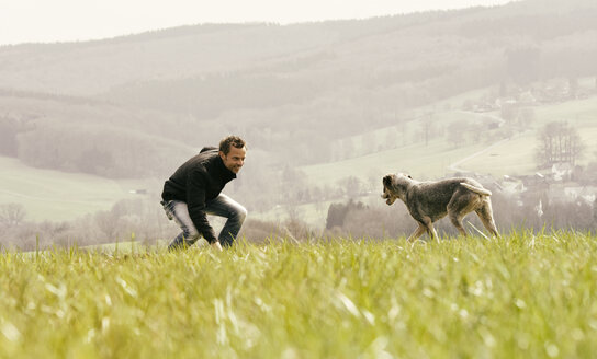 Man exercising with dog on meadow - ONF000813