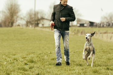 Man exercising with dog on meadow - ONF000816