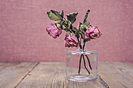 Glass vase with three withered roses - VTF000413