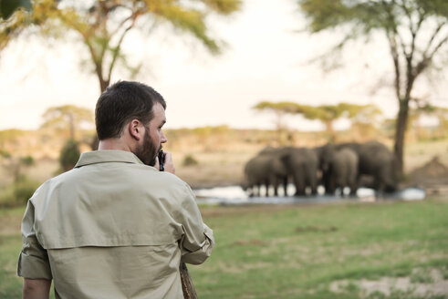 Botswana, Senyati Safari Camp, Man taking pictures of group of elephants - CLPF000112