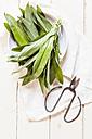Wild garlic, Allium ursinum, scissors and white cloth - SBDF001778