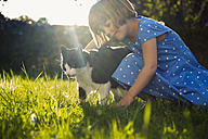 Little girl with cat on a meadow at backlight - LVF003201