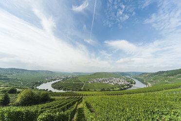 Germany,  Rhineland-Palatinate, Moselle loop Trittenheim - PAF001355