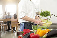 Cook of a little restaurant preparing lettuce in the kitchen - FKF001039