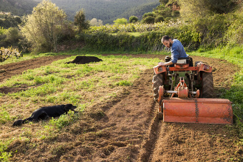Farmer with tractor on field with dog watching - GEMF000230