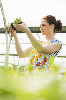 Young female gardener working in plant nursery - UUF003979