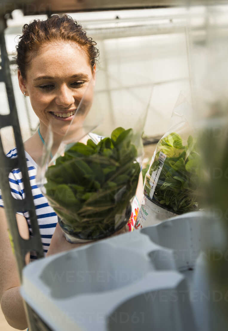 Young female gardener working in plant nursery - UUF004000 - Uwe Umstätter/Westend61