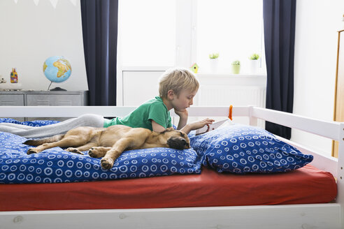 Dog lying on bed with boy using digital tablet - PDF000925
