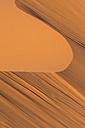Morocco, Sahara, Erg Chebbi, desert dune - HSKF000015