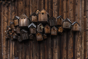 Different wooden birdhouses hanging on wooden wall - TCF004661