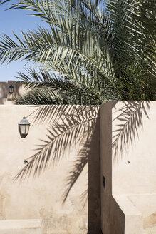 Oman, Jalan Bani Bu Ali, Jami al-Hamoda Mosque and date palm - HL000876