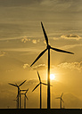 Germany, Salzgitter, wind park in the evening - PVCF000426