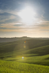 Italy, Tuscany, Val d'Orcia, rolling landscape at backlight - MKFF000199