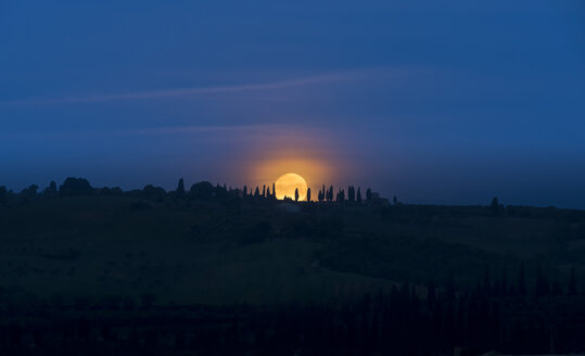 Italy, Tuscany, Val d'Orcia, moonset behind cypresses - MKFF000201