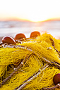 Greece, Corfu, Arillas, fishing net on the beach - EGBF000061