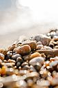 Greece, Corfu, close-up of pebble beach - EGBF000069
