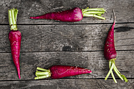 Four red radishes - SARF001783