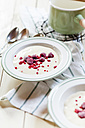Homemade vanilla custard with raspberries - SBDF001861
