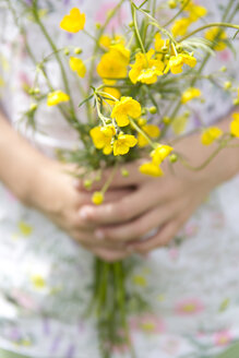 Little girl's hands holding bunch of buttercups - YFF000433