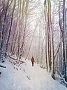 Germany, Palatinate Forest, woman in winter forest - GW004018