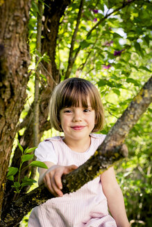 Portrait of smiling little girl climbing in a tree - LVF003395