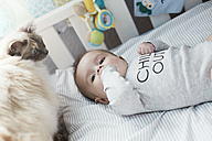 Baby lying in crib with cat - STKF001216