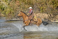 USA, Wyoming, Young cowboy rides his horse across river - RUEF001601