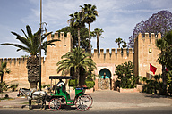 Morocco, Taroudant, City wall and gate - FC000667