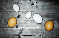 Two brown eggs and three white eggs on wood - KSWF001537