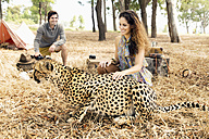 South Africa, woman petting tame cheetah on meadow with man in background - TOYF000663