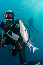 South Africa, Ocean, Diver with blue shark - GNF001335