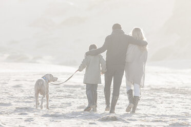 South Africa, Cape Town, back view of family walking on the beach with dog - ZEF005243