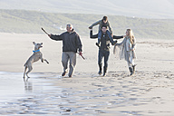South Africa, Cape Town, family walking on the beach with dog - ZEF005247