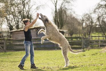 Woman training Irish Wolfhound on a meadow - TAMF000169