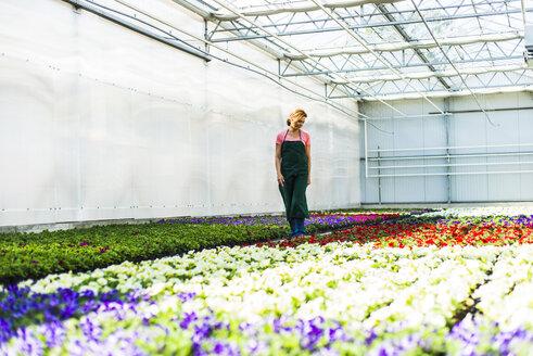 Woman in nursery looking at flowers - UUF004345