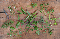 Different culinary herbs and scissors on wood - ASF005620