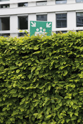 Germany, Duesseldorf, sign of meeting point behind a hedge - VIF000313