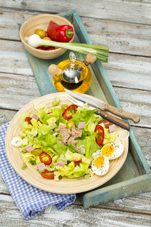 Plate of butterhead lettuce with boiled egg, spring onions, red bell pepper and tuna - MAEF010611
