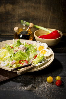 Plate of butterhead lettuce with boiled egg, spring onions, red bell pepper and tuna - MAEF010612