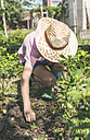 Boy with straw hat planting bulbs in a garden - DEGF000430