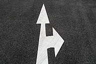 Road marking, Arrows, right and straight ahead - TCF004687