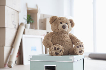 Teddy bear sitting on box in front of piled cardboard boxes - RBF002818