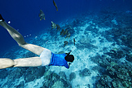 Maldives, fish and woman snorkeling in the Indian Ocean - STKF001296