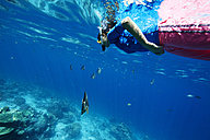 Maldives, woman snorkeling in the Indian Ocean - STKF001303