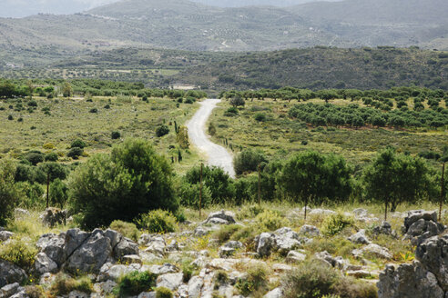 Greece, Crete, Dirt track in landscape - STDF000175