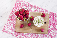 Bowl of red radishes and bowl of sour cream dip - SBDF002046
